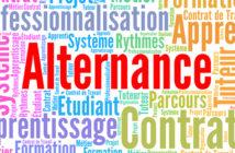Réforme de la formation professionnelle : l'alternance