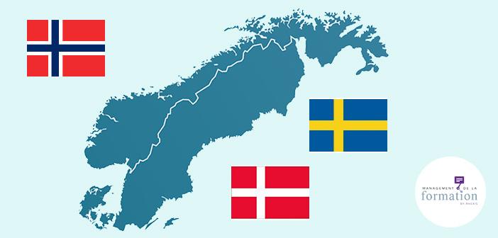 La formation professionnelle dans les pays nordiques